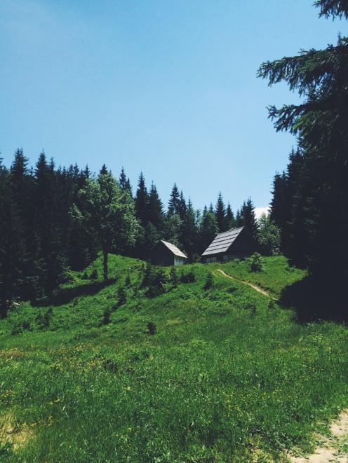 Preživljanje prostega časa v naravi