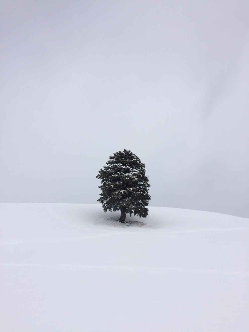 photo-25-02-2017-13-49-19
