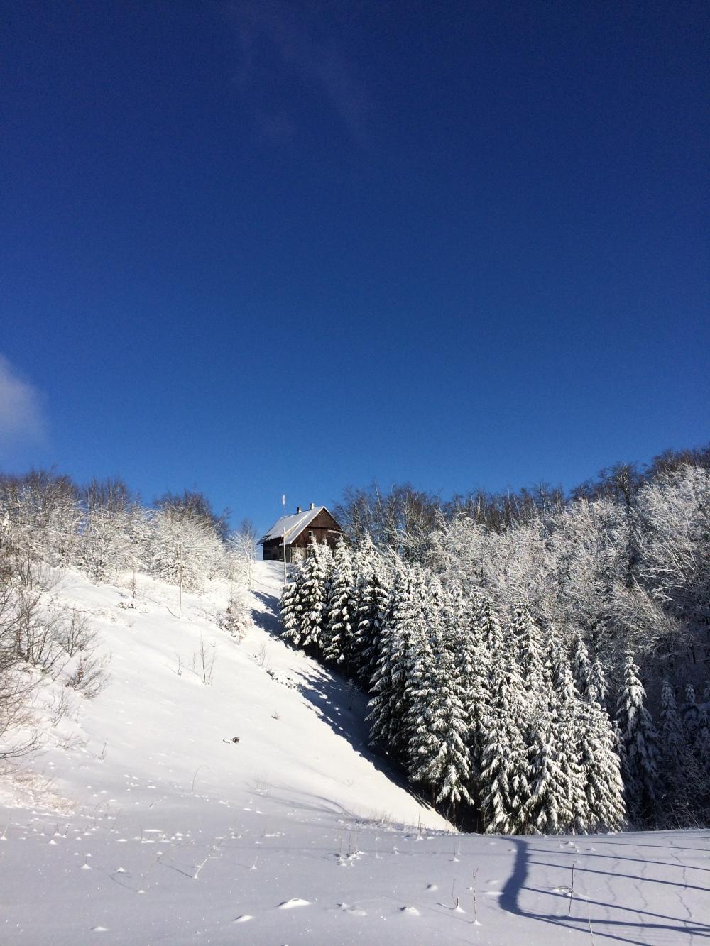 Photo 15-01-2017, 10 36 22