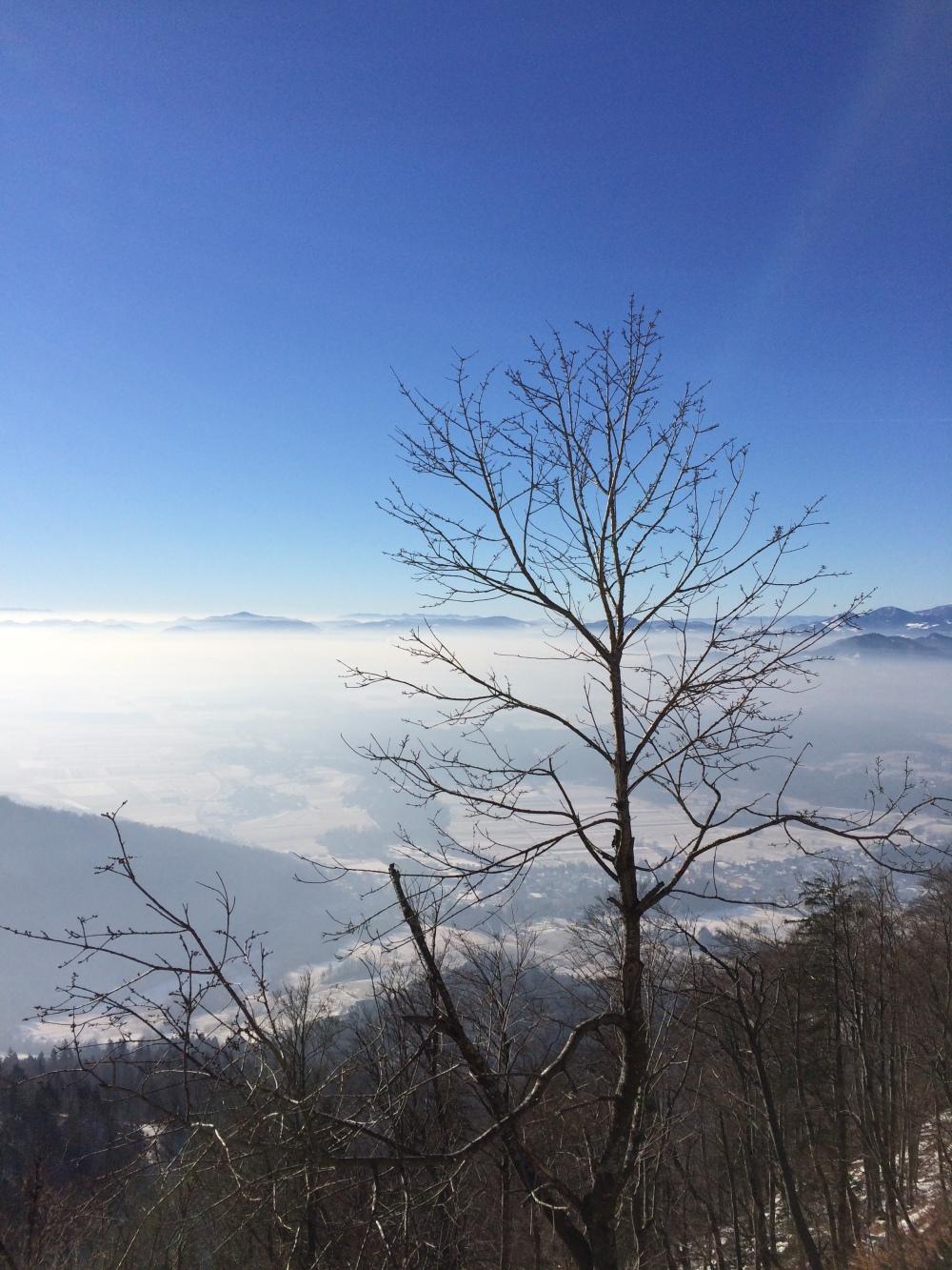 Photo 21-01-2017, 11 11 18