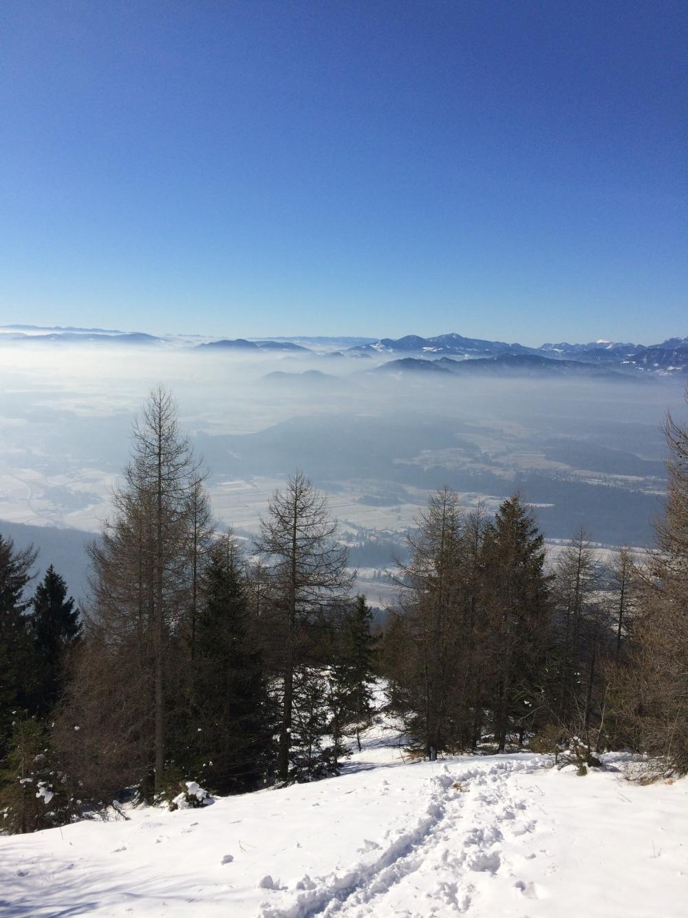 Photo 21-01-2017, 11 45 25 (1)