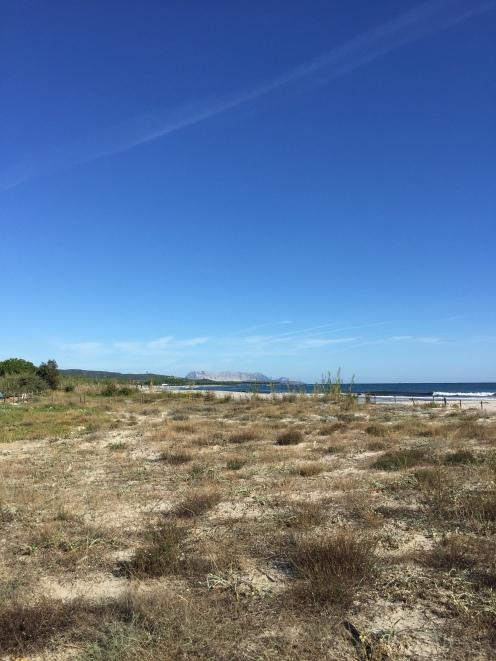 Vzhodna obala Sardinije je precej vetrovna.